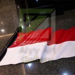 ornamen dinding bendera 3d